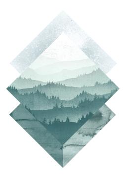 Forest landscape 2
